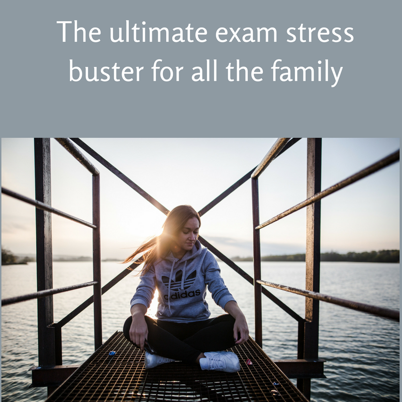 The ultimate exam stress buster for all the family